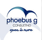 Phoebus G Consulting on Elioplus