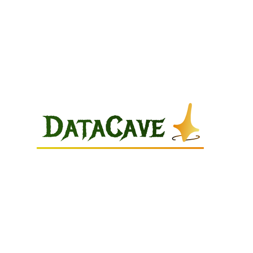 DataCave Software Solutions & Consultations on Elioplus